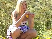 Alison Angel Beautiful Wildflower
